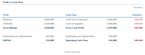 Cash Flow Report and Profit vs Cash
